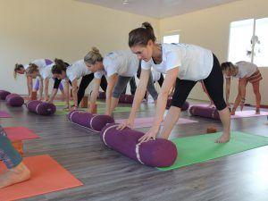 300 Hour Online Yoga Teacher Training