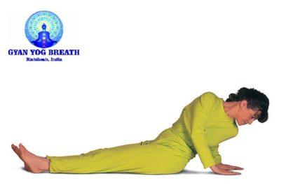 Bhu Namanasana – Asana Instructions, Benefits & Contra-Indications